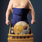 力士プロフィール_-_青狼_武士_-_日本相撲協会公式サイト